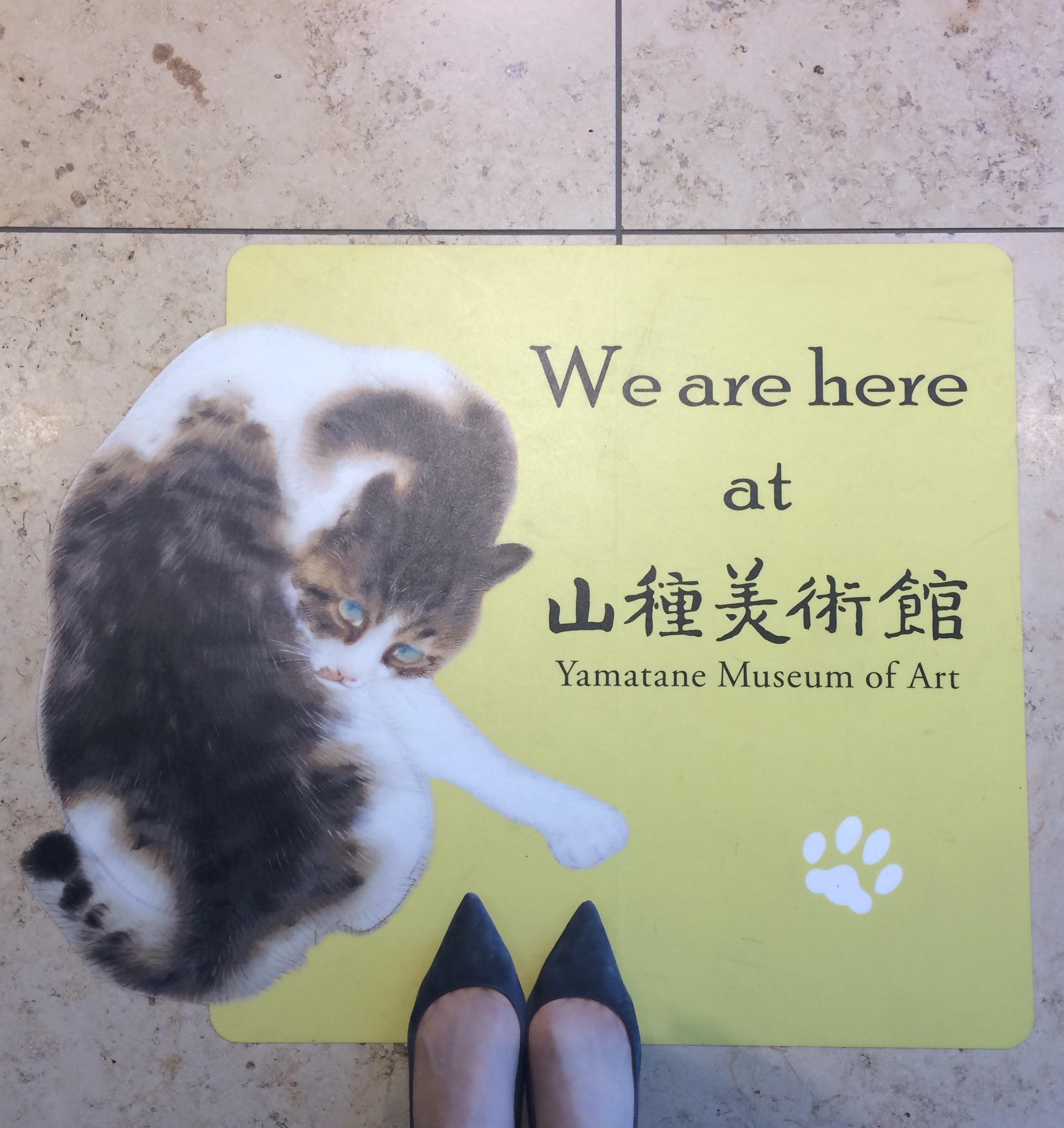美術館の猫_1_1