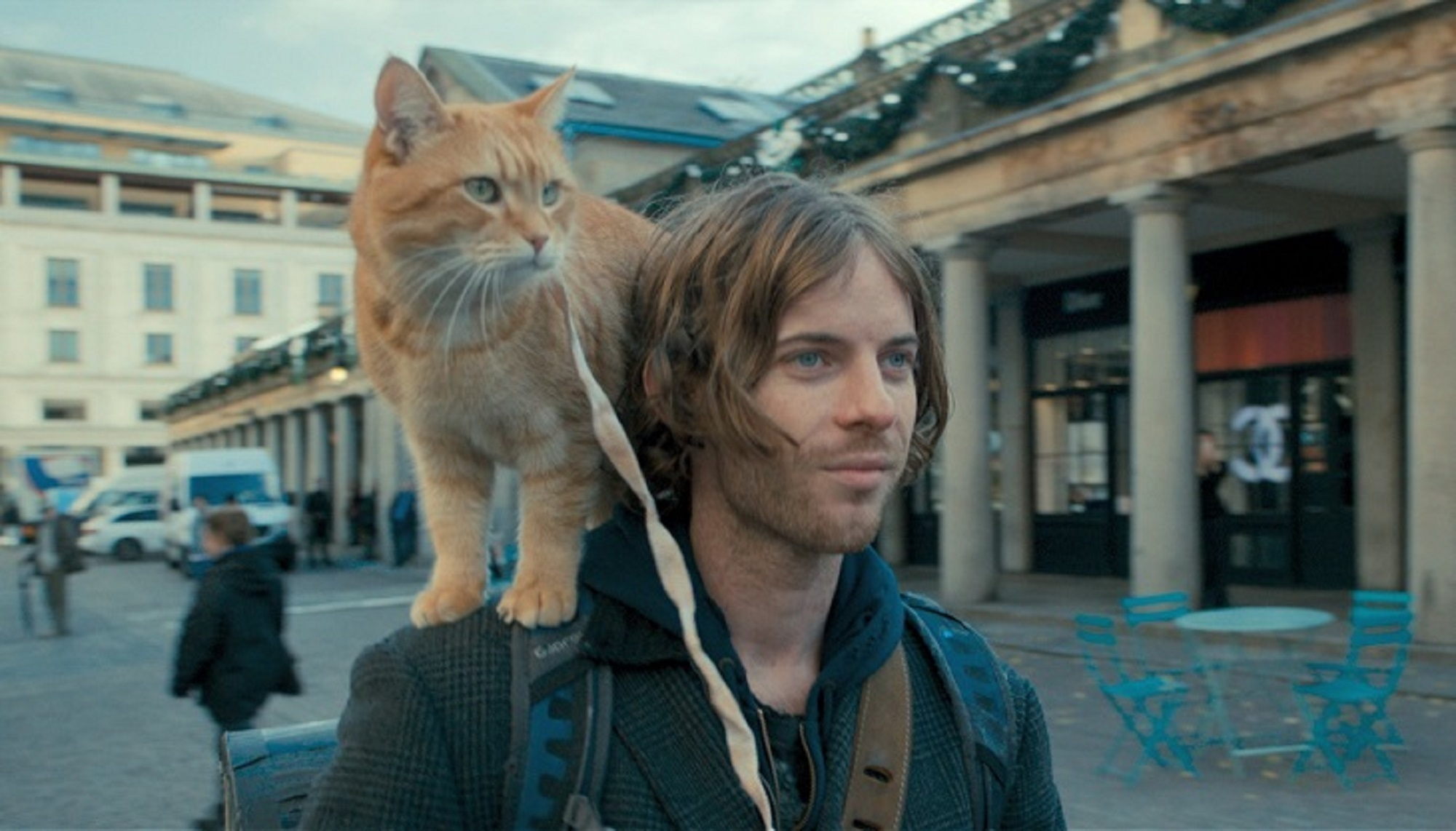 猫ちゃん派もそうじゃない人も必見!映画「ボブという名の猫」_1_1