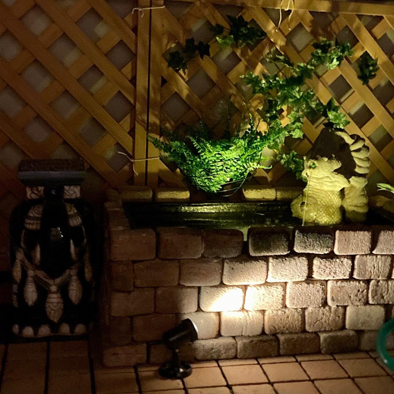 夜はライトアップされた池