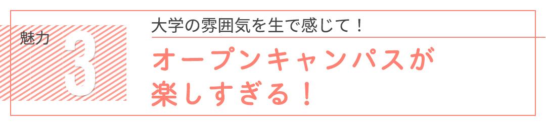 学生ファーストで就職サポートも手厚い♪ 日本文化大學のオープンキャンパスに行こう!_1_10