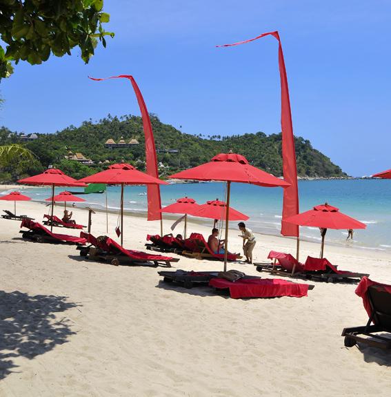 タイビーチのビーチを楽しむ、離島のホテル5選(リペ/クラダン/サメット/パンガン/チャン) _3_1