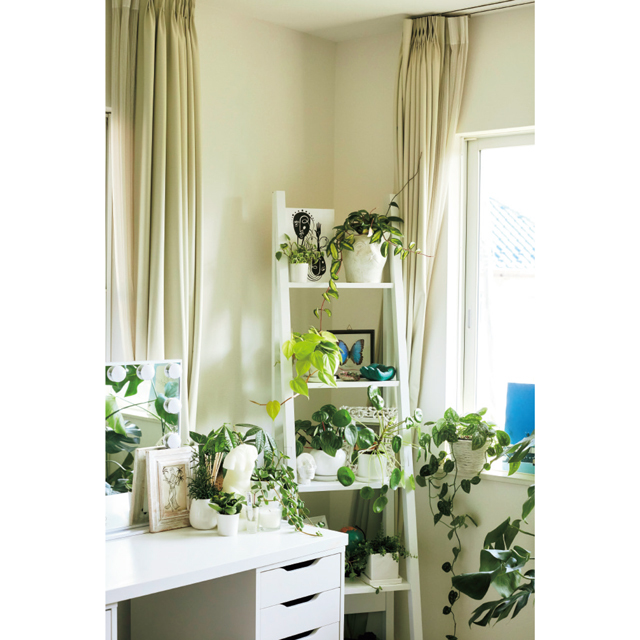 部屋の家具に合わせ鉢も白で統一