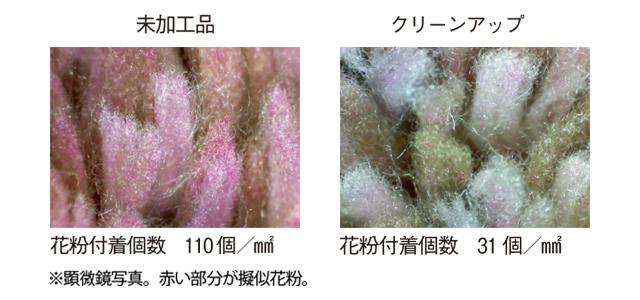 「なんとかしたい!」をニトリで解消 花粉対策まで考えた快適な春の部屋づくり_1_6