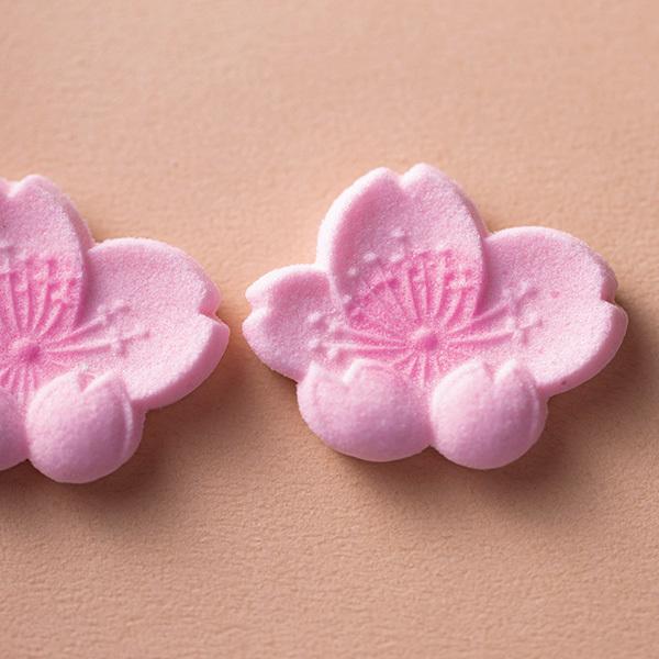 """様々な表情で華やぐ、桜を愛でる""""京の和菓子""""【「京都」桜にまつわる10の愉しみ】_1_1-2"""