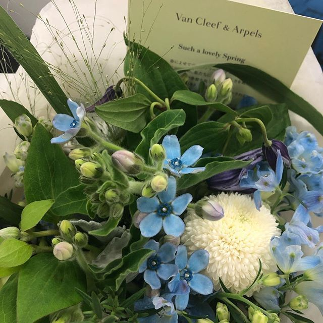 ヴァンクリーフアーペルさんから春の訪れを祝福する花束を頂きました♪ _1_1