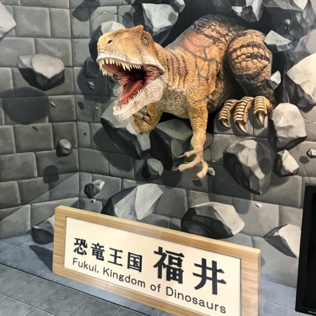 小松空港では、勝山で出土した恐竜、その名もフクイラプトルのリアルなロボットが出迎えてくれます。
