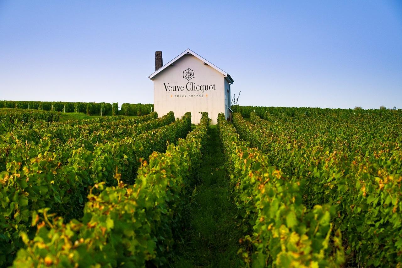 ヴーヴ・クリコの最高級ライン「ラ・グランダム 2008」が登場。その優雅さに酔いしれたい!【飲むんだったら、イケてるワイン/特別編】_1_3