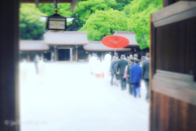 【番外編】雨上がりの参拝@明治神宮_1_4-1