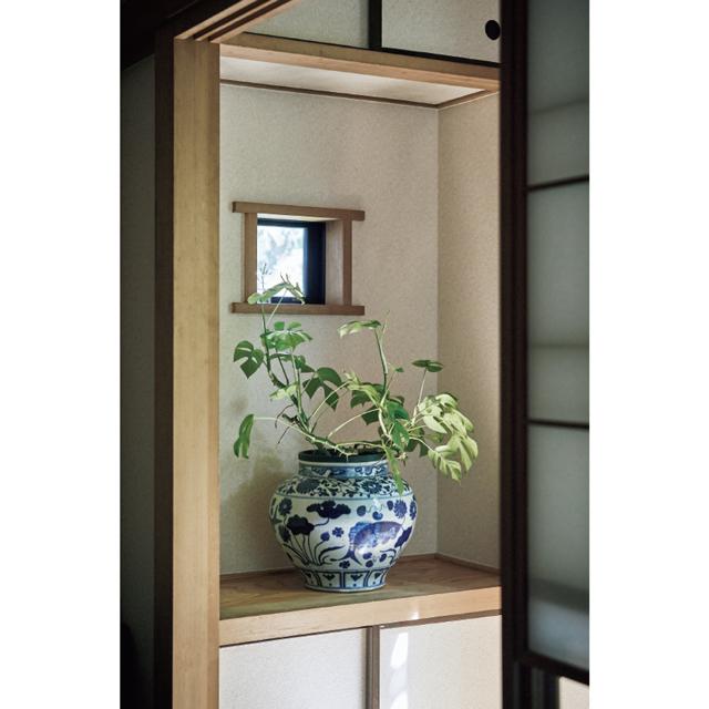 縁側の突き当たりには、染付の壺に観葉植物を