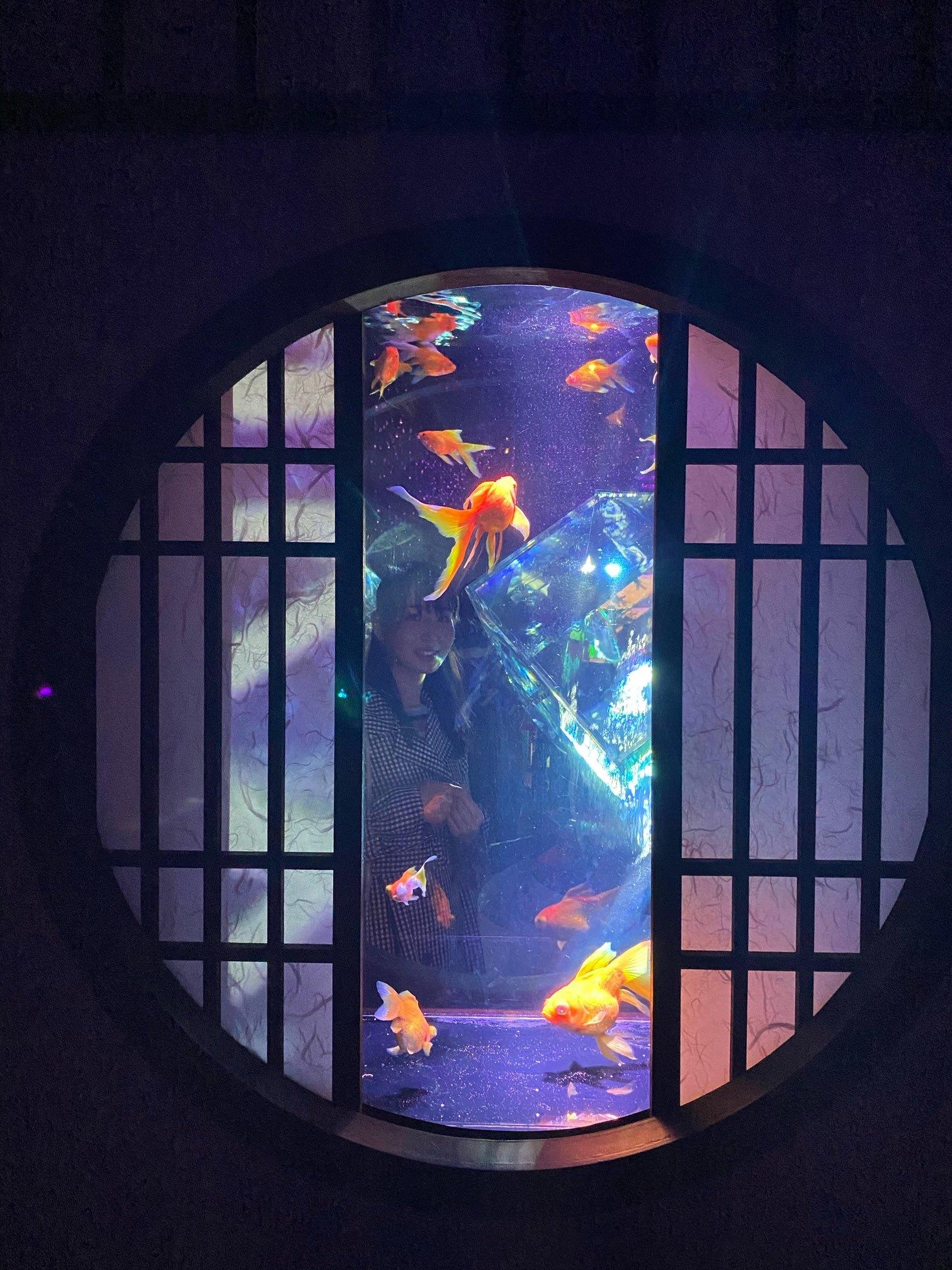【日本橋】「アート」な水族館!?_1_4-1