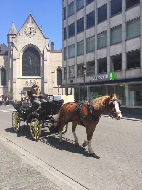 ベルギー ブリュッセル_1_1-5