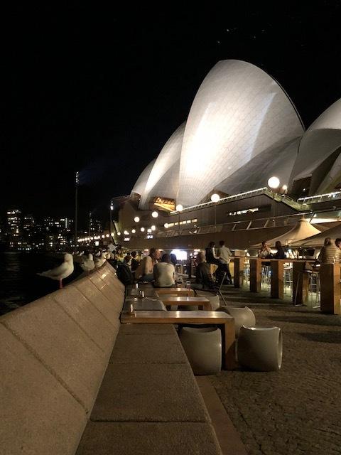 シドニー。火曜日。20時半。_1_2-1