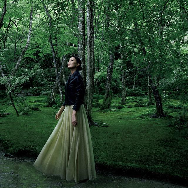 隠れた美しさを求めて……好奇心を満たす京都・嵯峨野の名所 五選_1_1-5