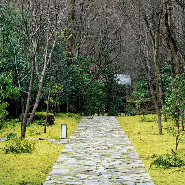 自然豊かで広大な森を美しくデザインした安息の地