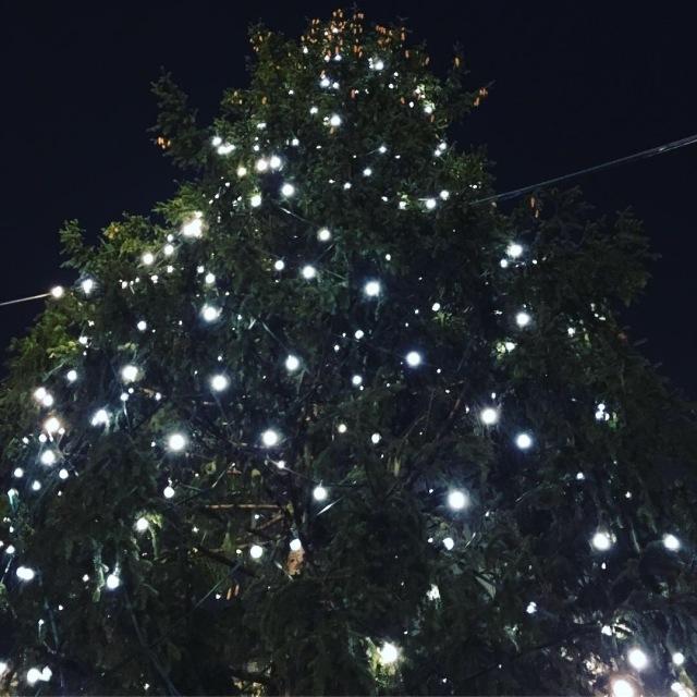クリスマスツリーの上の方