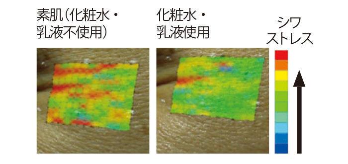 独自保湿成分アクアインプール配合の化粧水と乳液を使うことで、表情ジワも改善されている。資料提供/資生堂