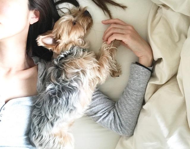 犬を飼うということ【40代 私の暮らし】_1_10