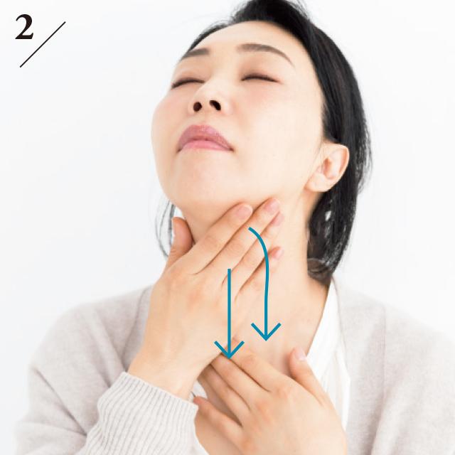 首を上げ、指全体を使ってあご先から首の真ん中を通って上から下へ流す