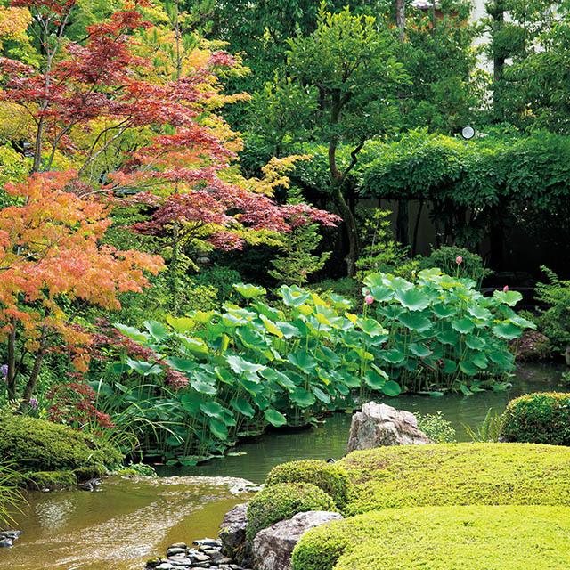四季折々の景色が美しい池泉回遊式庭園「余香苑」