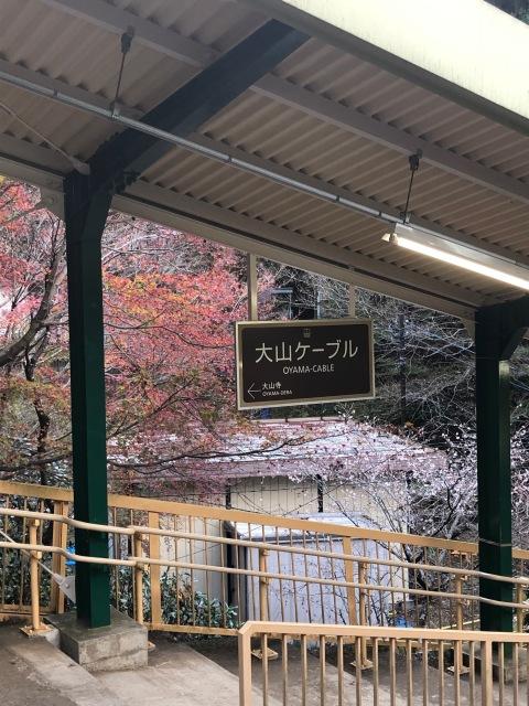 【週末のリフレッシュに】関東パワースポット 大山阿夫利神社_1_1-2