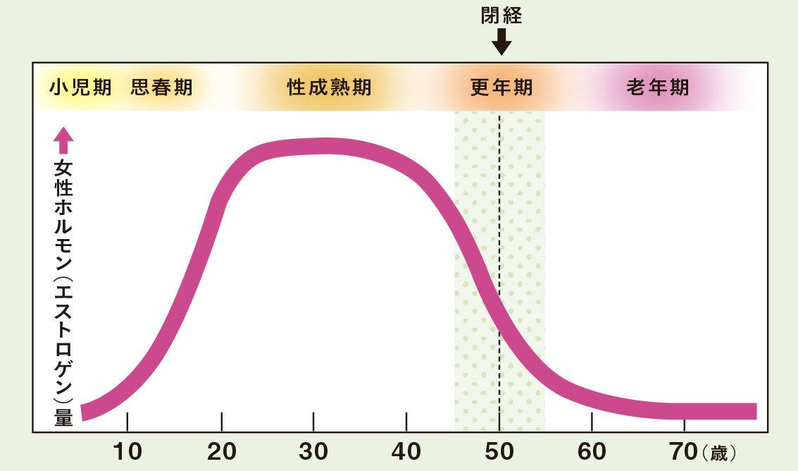 女性ホルモン分泌量の変化グラフ