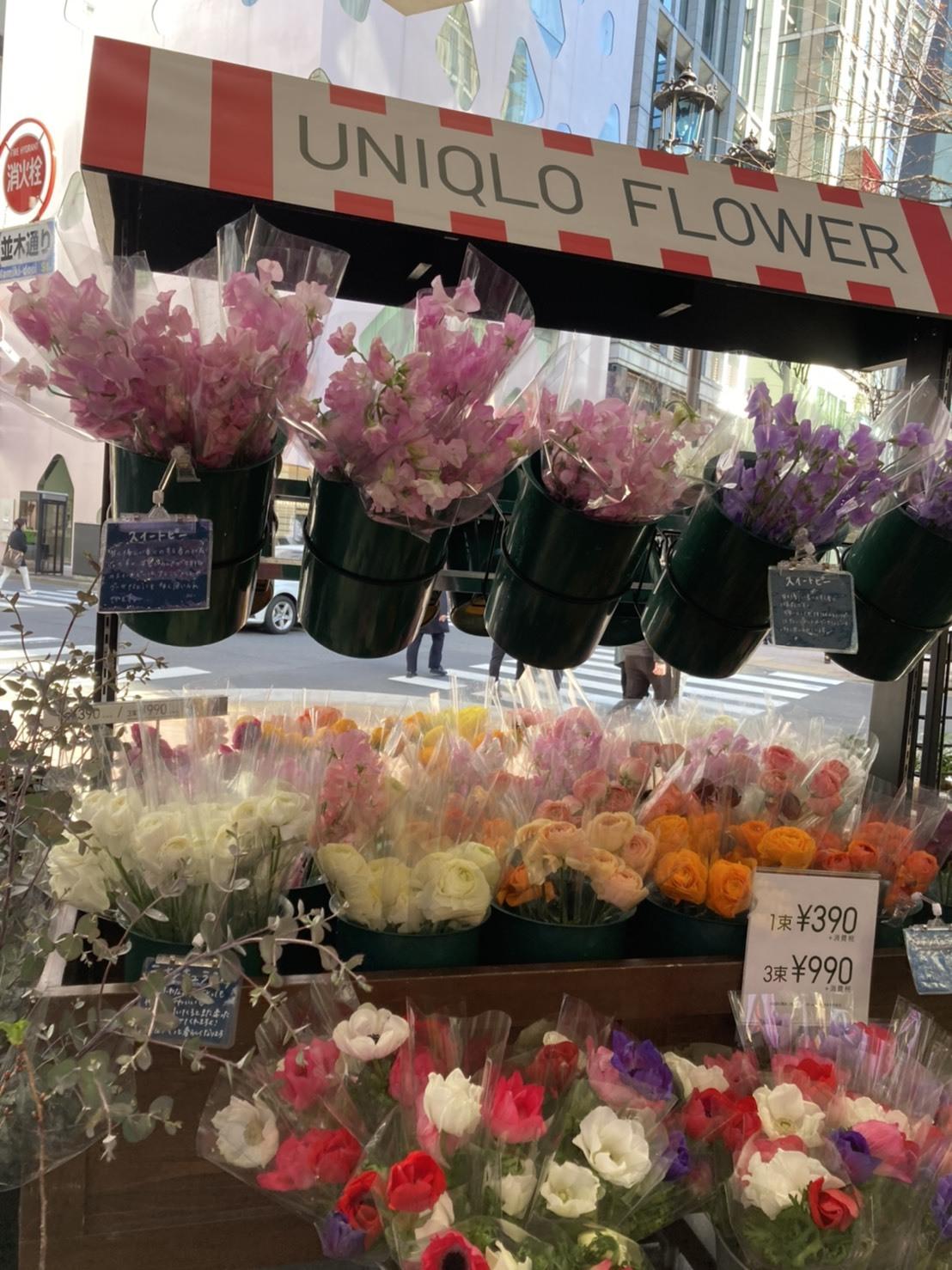 ユニクロでお花が買える!?_1_1-2