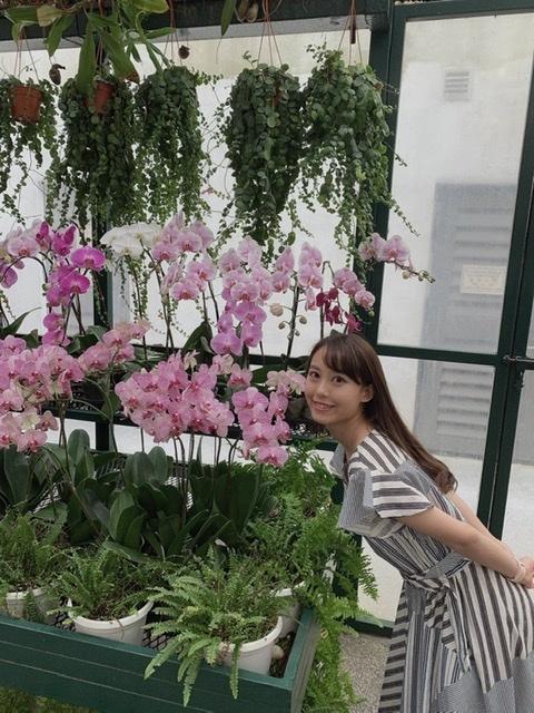 お花に囲まれてアフタヌーンティー♡マジェスティックホテル_1_4-1