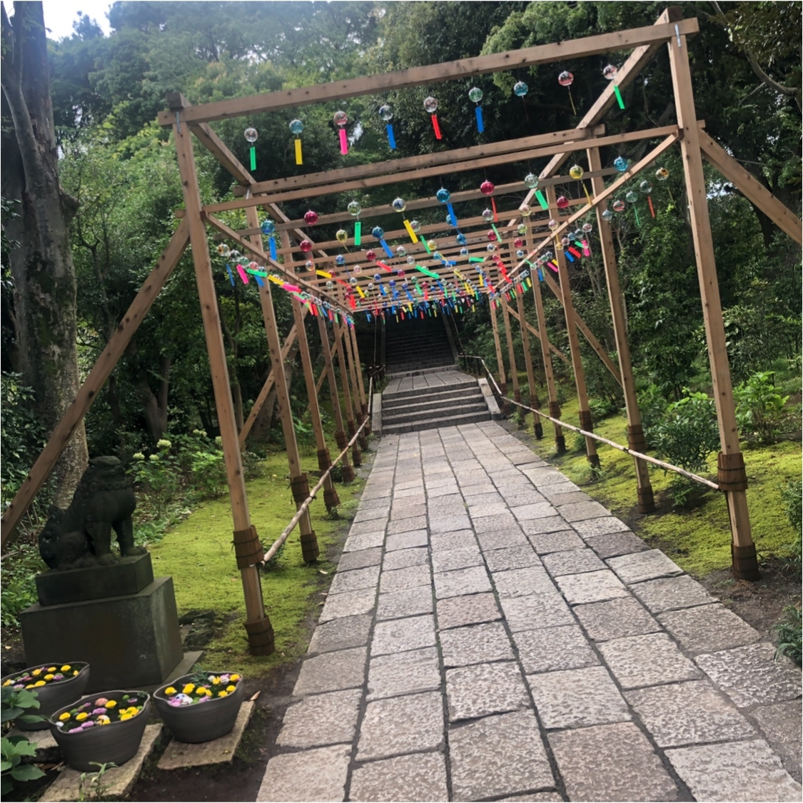 """Vol.84♡ 日本一映える植物園?! 新感覚flower park """"HANA・BIYORI""""_1_1"""