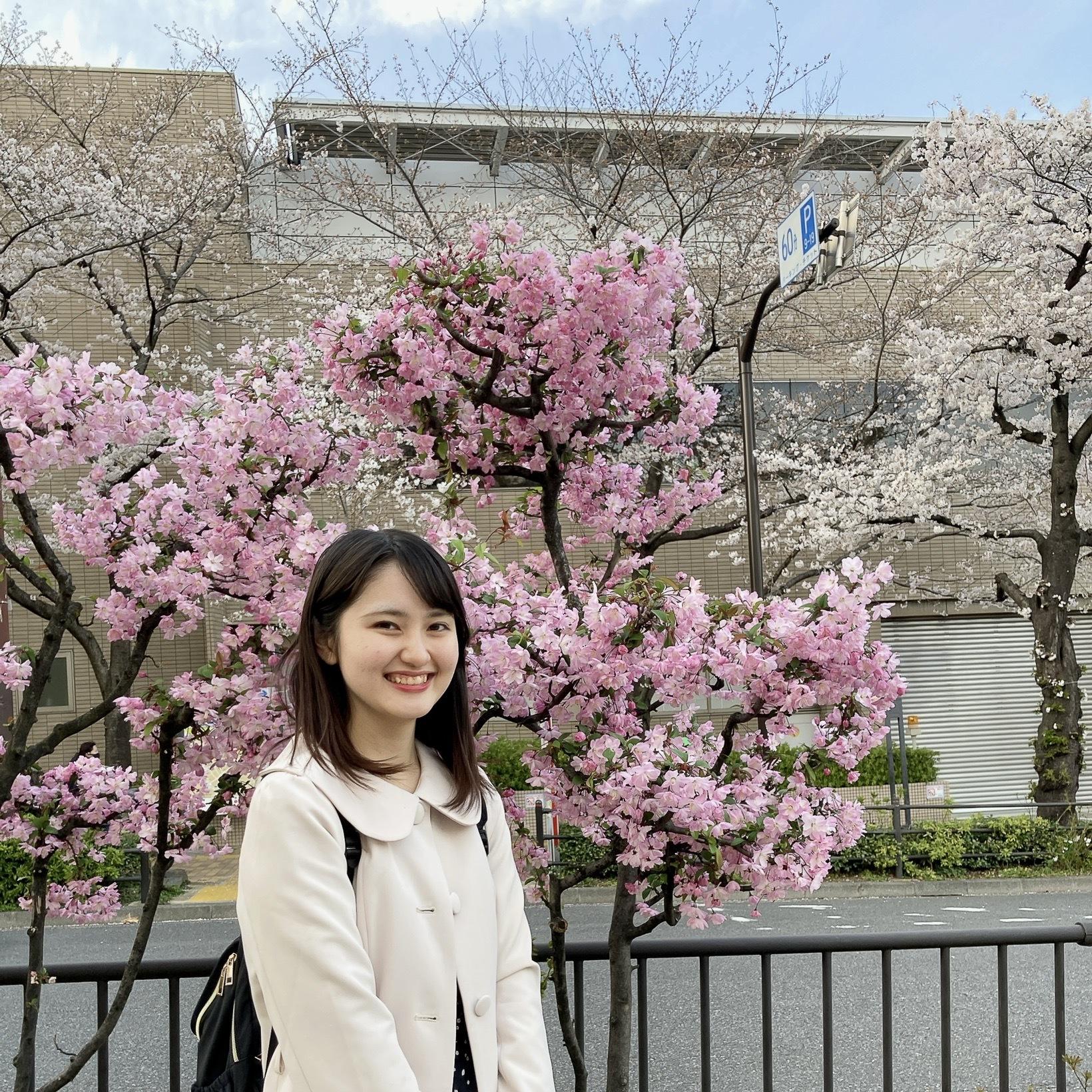 【お花見ならココ?】池袋から5分?!ドラマロケ地にもなった桜並木!!_1_1
