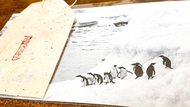 【さかぽんの冒険Vol.4】石垣島最終日 お土産探し街中ぶらり旅❤️_1_4