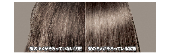 うるおいだけでもツヤだけでもない、キレイのカギは髪の表面が乱れなく整った 「髪のキメがそろった」状態に注目。