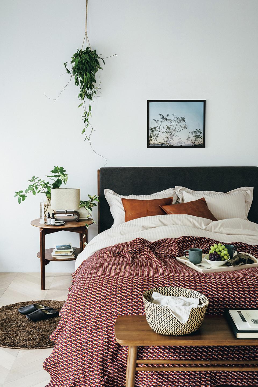 理想がかなうニトリの快眠アイテム 心地よい寝室で美を育む良質な眠りを  _1_1