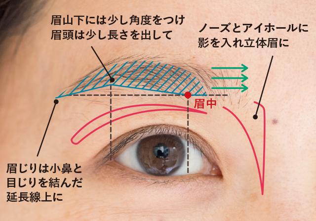 眉山下の角度と眉の長さが知的な