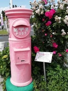 レトロな形の郵便ポスト。しかも薔薇にちなんでピンク色。ばら色ポスト、という名前だそうです。