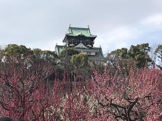 大阪城公園の梅林と至福のイチゴパルフェ_1_2-3
