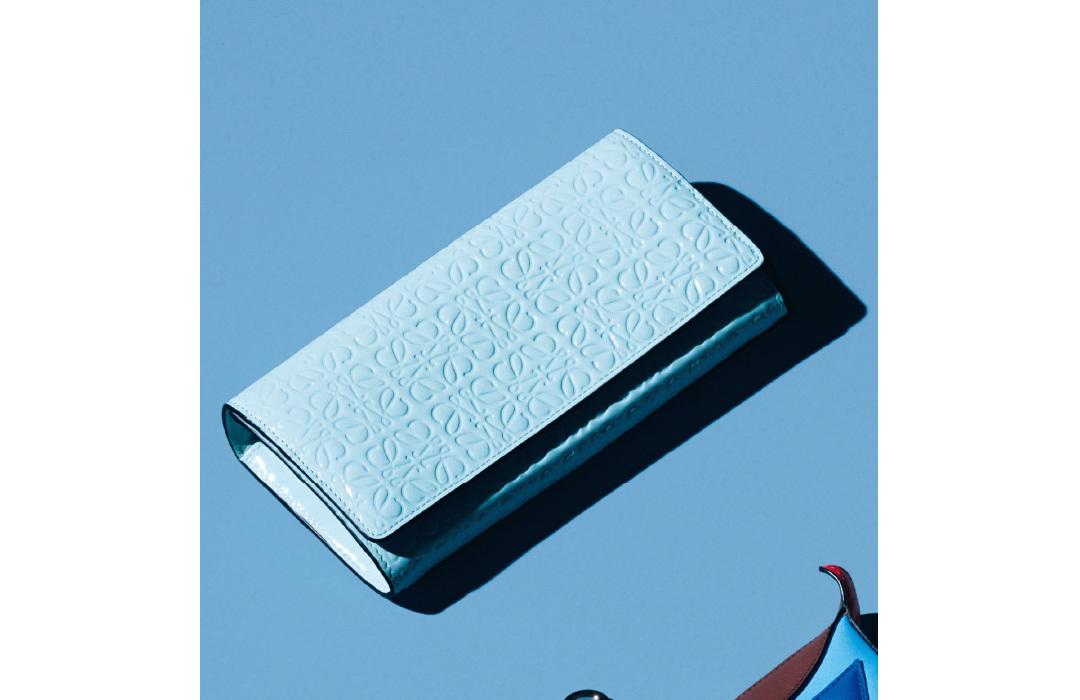 ロエベのミニ財布&長財布♡ 可愛くてアガる&長く使える!【20歳からの名品】_1_2-4