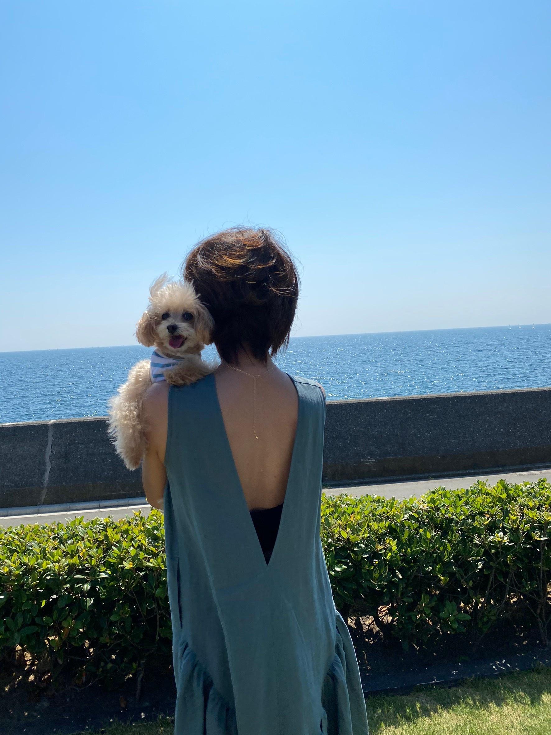 ワンコと一緒の夏休み_1_5