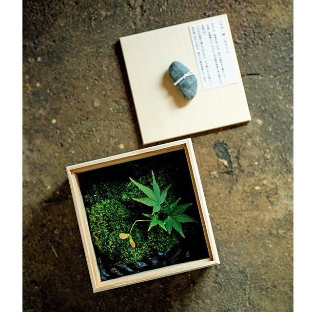 「季節の木箱」¥4,000。