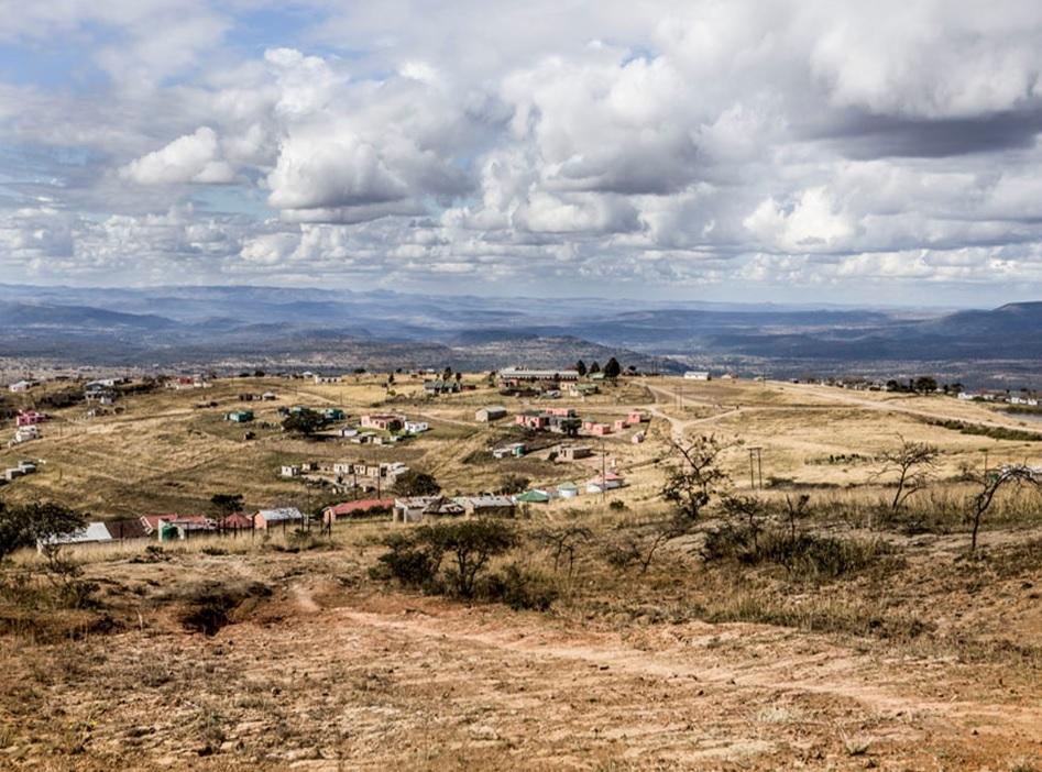 """平和と希望のワイン「アスリナ」 南アフリカの黒人女性醸造家の""""夢""""とは?_1_2"""