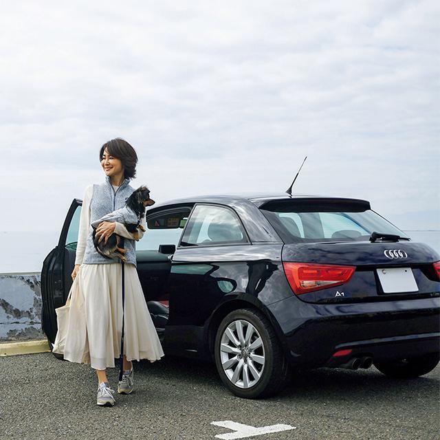 散歩コースの鎌倉の海へも、ピクニックセットを積んで車を走らせる