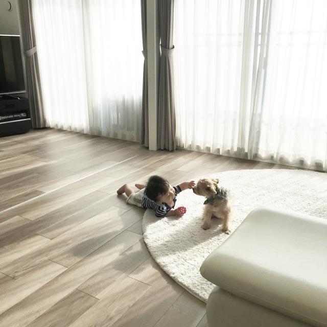 犬を飼うということ【40代 私の暮らし】_1_3