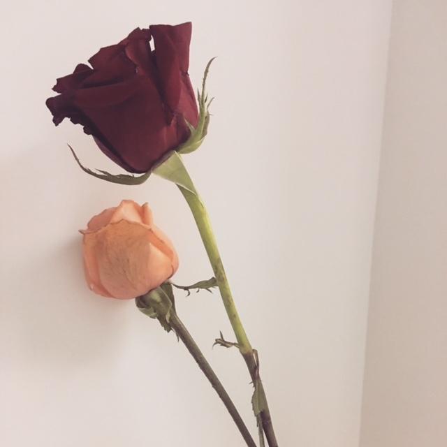 香港のバレンタインはイギリス流。男性から女性へが基本♡_1_3