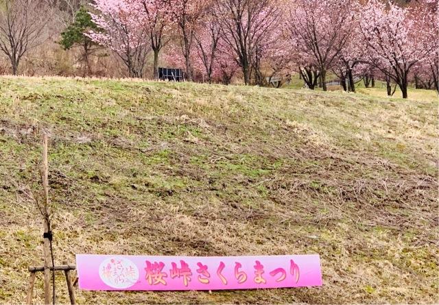 福島県でおすすめの『桜の名所』①_1_3