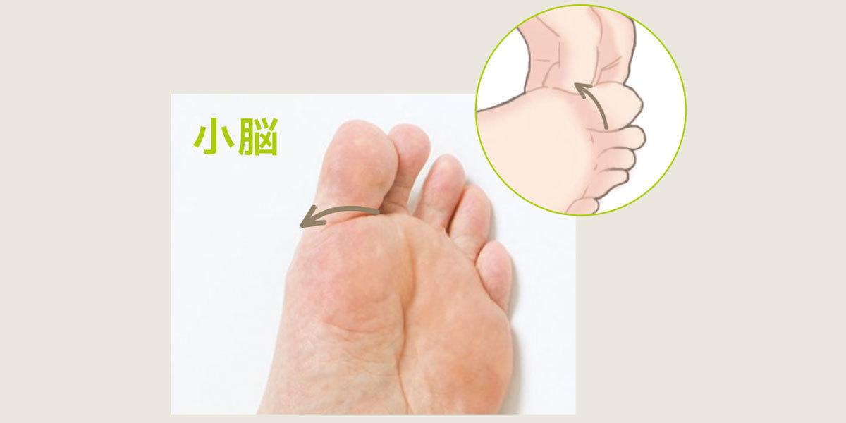 ■動ける体を作る足ツボ