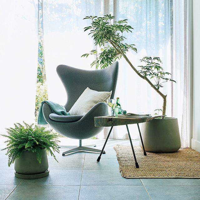 夏の快適インテリア「グリーン」や「リネン」で涼やかな空間作り_1_1