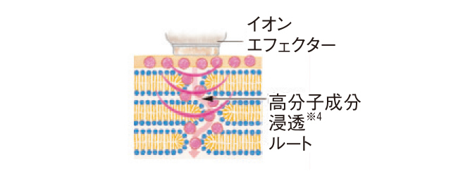 イオンエフェクターで高分子成分も浸透させる