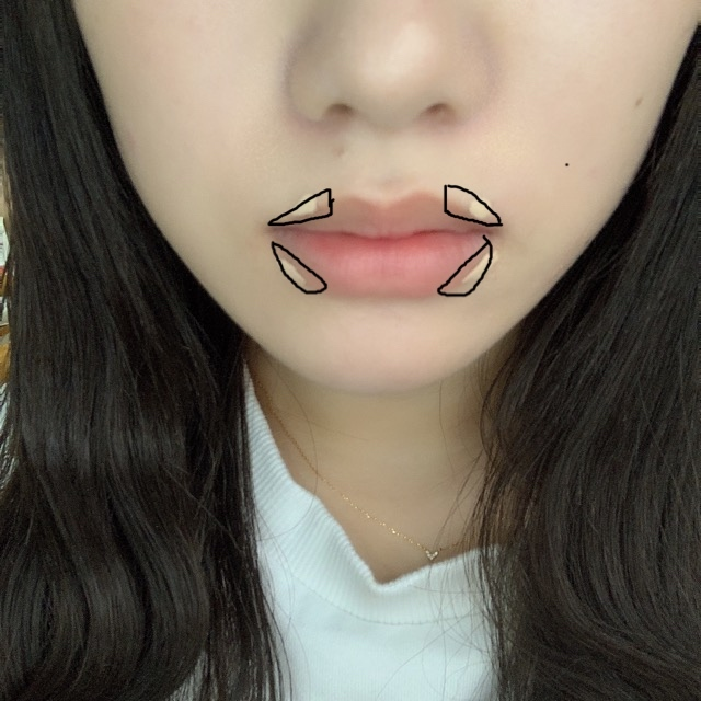 【唇は自分で作る】 なりたい唇はどれ??_1_4-1