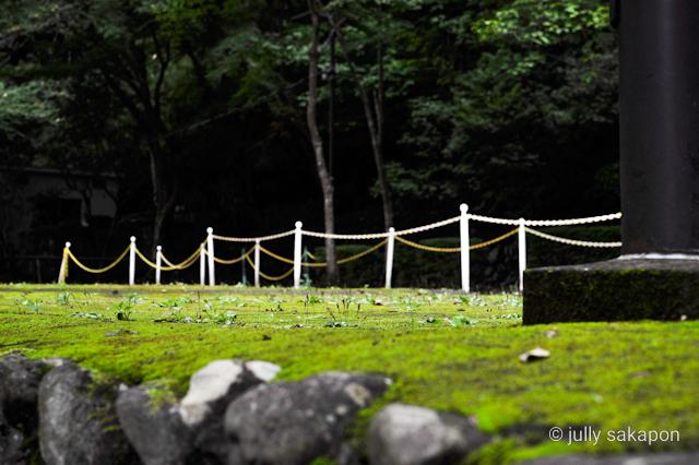 【さかぽんの冒険】苔むす秋の山と温泉プチトリップ❤️@高尾山_1_9