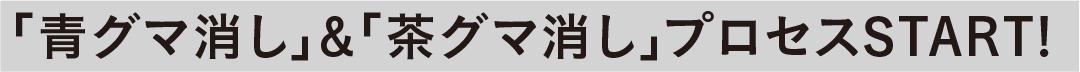 「青グマ消し」&「茶グマ消し」プロセスSTART!