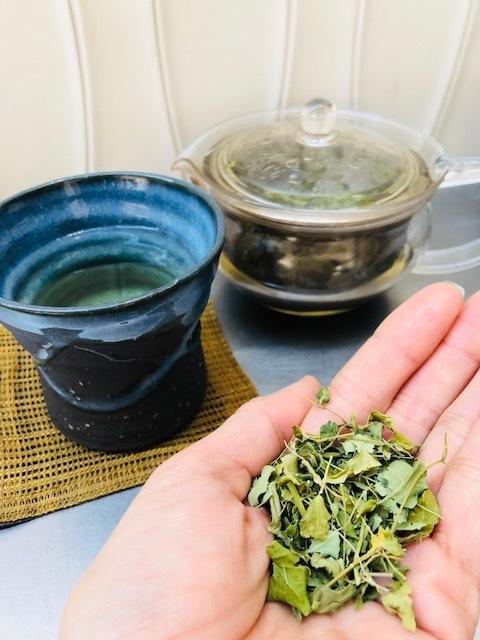 万能茶「モリンガ」で風邪予防&アンチエイジング_1_3